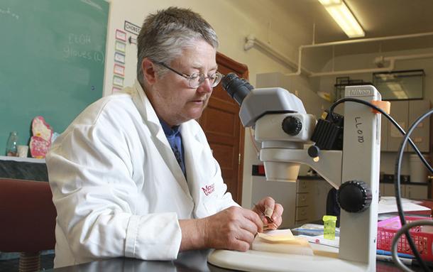 Talking Ticks and Lyme Disease Testing with Dr. Vett Lloyd